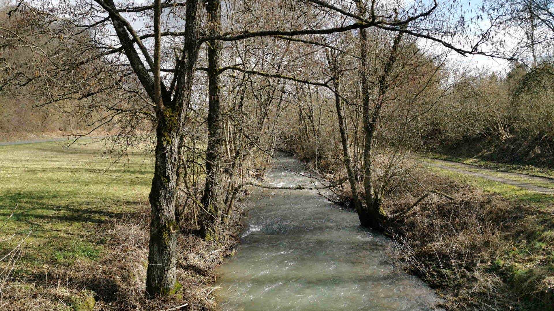 Ferienhaus Landhaus-Loogh-Umgebung Niederehe Frühjahrswasser